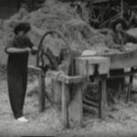 Construction en terre crue dans les années 30 en allemagne